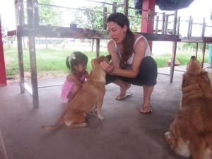 animals and reiki