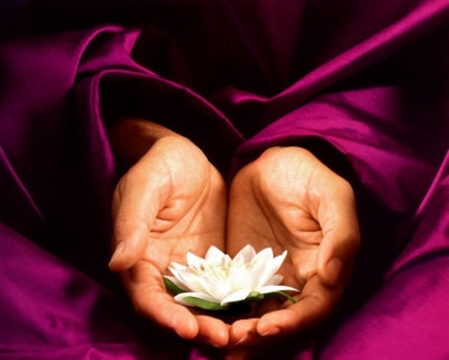 reiki hands with lotus