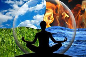 animal reiki meditation
